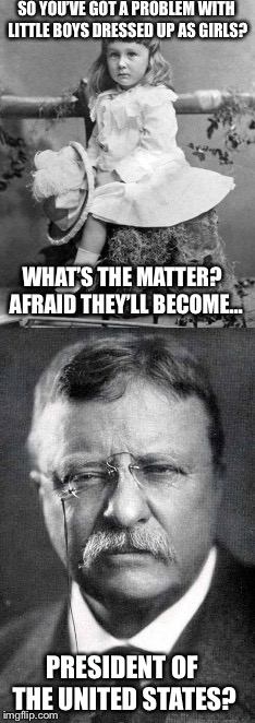 Teddy is one of the best |  SO YOU'VE GOT A PROBLEM WITH LITTLE BOYS DRESSED UP AS GIRLS? WHAT'S THE MATTER?  AFRAID THEY'LL BECOME... PRESIDENT OF THE UNITED STATES? | image tagged in teddy roosevelt,dress | made w/ Imgflip meme maker
