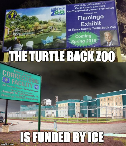 The Turtle Back Zoo is funded by ICE | THE TURTLE BACK ZOO IS FUNDED BY ICE | image tagged in trump immigration policy | made w/ Imgflip meme maker