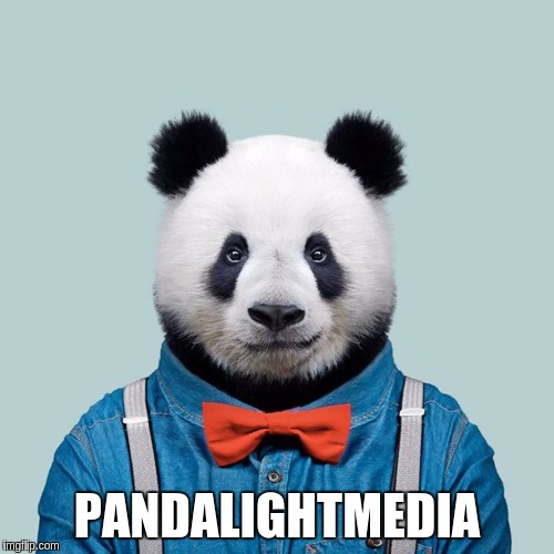 #PANDALIGHTMEDIA | PANDALIGHTMEDIA | image tagged in panda,pandas,the great awakening,news,cnn fake news,anchorman news update | made w/ Imgflip meme maker