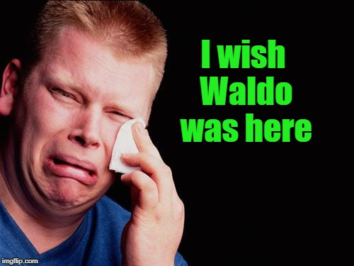 cry | I wish Waldo was here | image tagged in cry | made w/ Imgflip meme maker