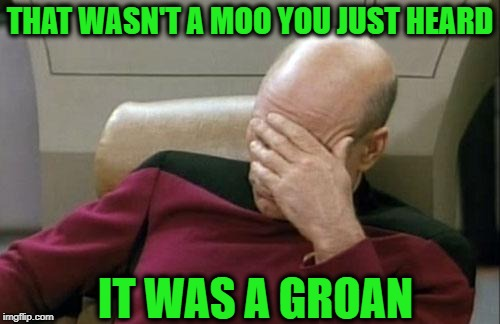 Captain Picard Facepalm Meme | THAT WASN'T A MOO YOU JUST HEARD IT WAS A GROAN | image tagged in memes,captain picard facepalm | made w/ Imgflip meme maker