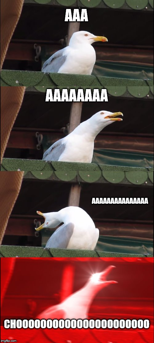 Inhaling Seagull | AAA AAAAAAAA AAAAAAAAAAAAAAA CHOOOOOOOOOOOOOOOOOOOOOO | image tagged in memes,inhaling seagull | made w/ Imgflip meme maker