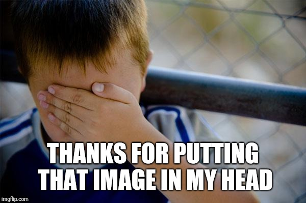 THANKS FOR PUTTING THAT IMAGE IN MY HEAD | image tagged in memes,confession kid | made w/ Imgflip meme maker