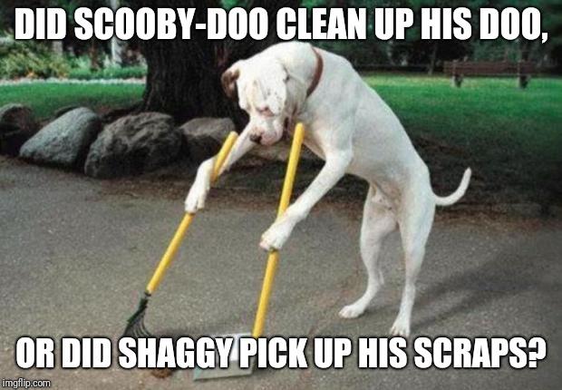 Dog Poop Memes Gifs Imgflip