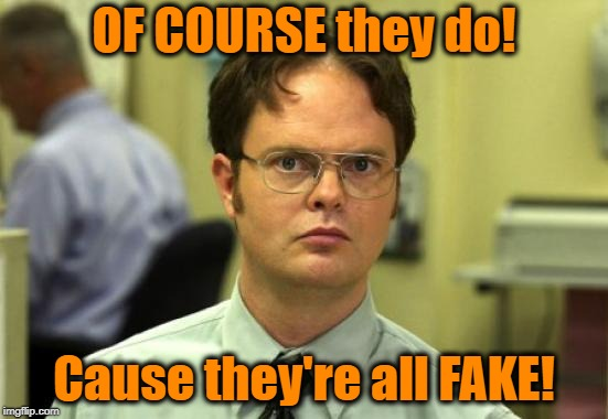 Dwight Schrute Meme | OF COURSE they do! Cause they're all FAKE! | image tagged in memes,dwight schrute | made w/ Imgflip meme maker