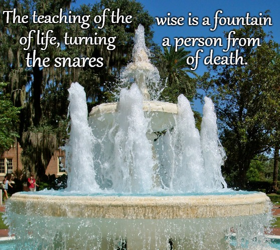 Proverbs 13:14 The Teaching of the Wise is a Fountain of Life | The teaching of the wise is a fountain of life, turning a person from the snares of death. | image tagged in bible,holy bible,holy spirit,bible verse,verse,god | made w/ Imgflip meme maker