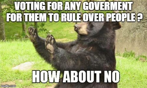 How About No Bear | VOTING FOR ANY GOVERMENT FOR THEM TO RULE OVER PEOPLE ? | image tagged in memes,how about no bear | made w/ Imgflip meme maker