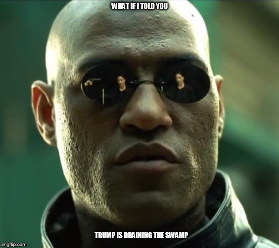Morpheus  | WHAT IF I TOLD YOU TRUMP IS DRAINING THE SWAMP | image tagged in morpheus | made w/ Imgflip meme maker