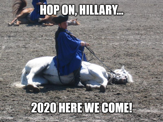 A dead horse | HOP ON, HILLARY... 2020 HERE WE COME! | image tagged in hillary clinton | made w/ Imgflip meme maker