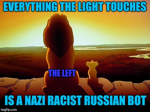 Lion King Meme | EVERYTHING THE LIGHT TOUCHES IS A NAZI RACIST RUSSIAN BOT THE LEFT | image tagged in memes,lion king | made w/ Imgflip meme maker