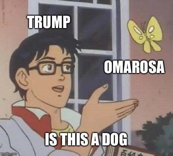 Little Late but still  | TRUMP OMAROSA IS THIS A DOG | image tagged in memes,is this a pigeon,omarosa,funny,trump,what is this | made w/ Imgflip meme maker
