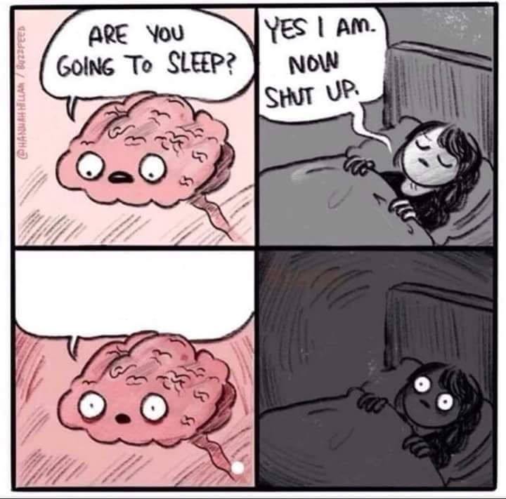 insomnia brain can't sleep blank Blank Template - Imgflip