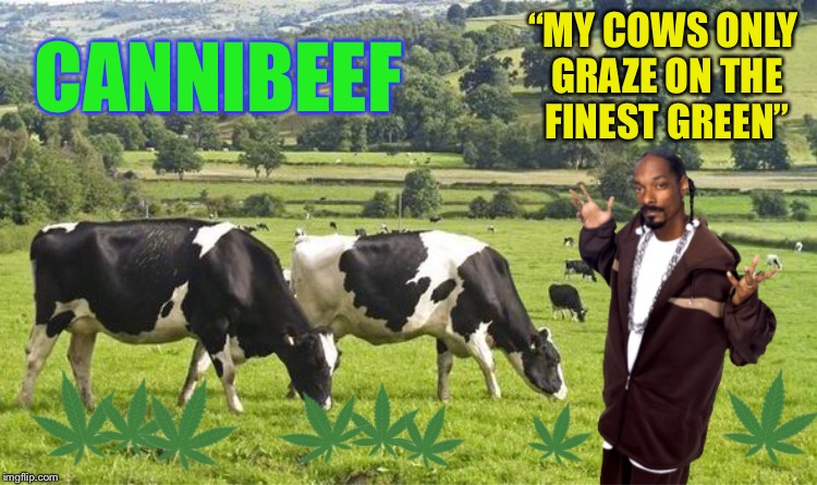 "CANNIBEEF ""MY COWS ONLY GRAZE ON THE FINEST GREEN"" 