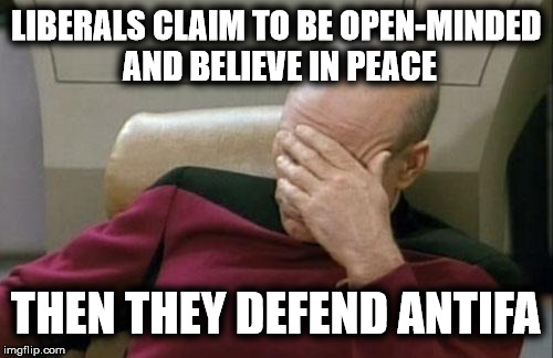 Captain Picard Facepalm | LIBERALS CLAIM TO BE OPEN-MINDED AND BELIEVE IN PEACE THEN THEY DEFEND ANTIFA | image tagged in antifa,liberal logic,stupid liberals | made w/ Imgflip meme maker
