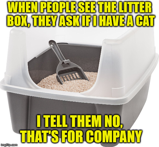 WHEN PEOPLE SEE THE LITTER BOX, THEY ASK IF I HAVE A CAT I TELL THEM NO, THAT'S FOR COMPANY | made w/ Imgflip meme maker