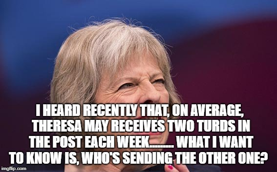 Theresa May | I HEARD RECENTLY THAT, ON AVERAGE, THERESA MAY RECEIVES TWO TURDS IN THE POST EACH WEEK......... WHAT I WANT TO KNOW IS, WHO'S SENDING THE O | image tagged in theresa may | made w/ Imgflip meme maker