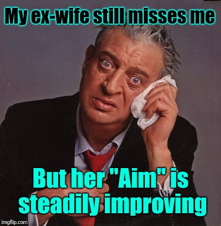 "Maybe she just needs a few more lessons to get the job done |  My ex-wife still misses me; But her ""Aim"" is steadily improving 