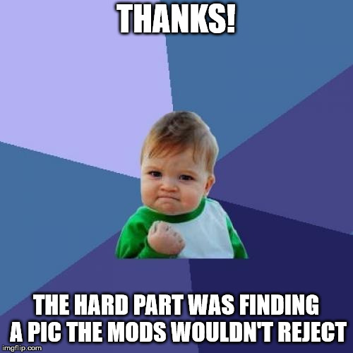 Success Kid Meme | THANKS! THE HARD PART WAS FINDING A PIC THE MODS WOULDN'T REJECT | image tagged in memes,success kid | made w/ Imgflip meme maker