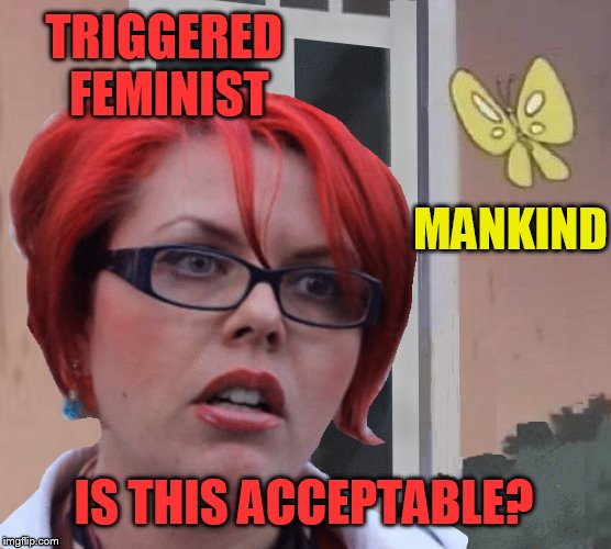 TRIGGERED FEMINIST IS THIS ACCEPTABLE? MANKIND | made w/ Imgflip meme maker