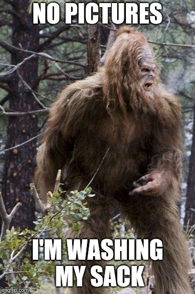 sasquatch | NO PICTURES I'M WASHING MY SACK | image tagged in sasquatch | made w/ Imgflip meme maker