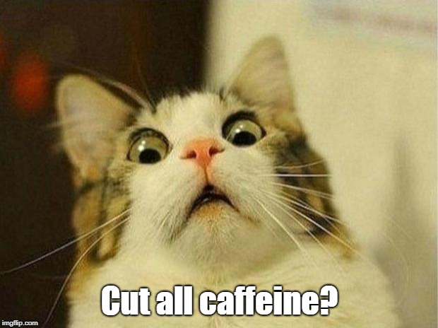 Scared Cat Meme | Cut all caffeine? | image tagged in memes,scared cat | made w/ Imgflip meme maker