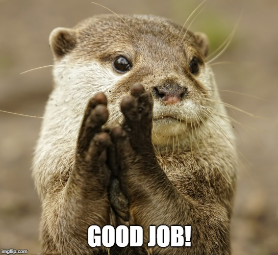 Squirrel Applause | GOOD JOB! | image tagged in squirrel applause | made w/ Imgflip meme maker