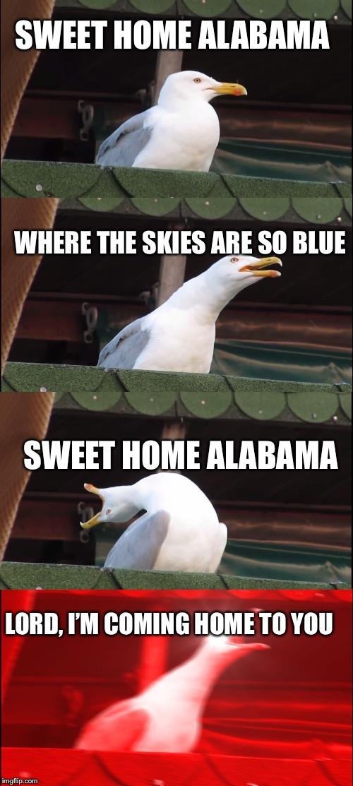 Home Design 12 Images Home Sweet Home Alabama Meme