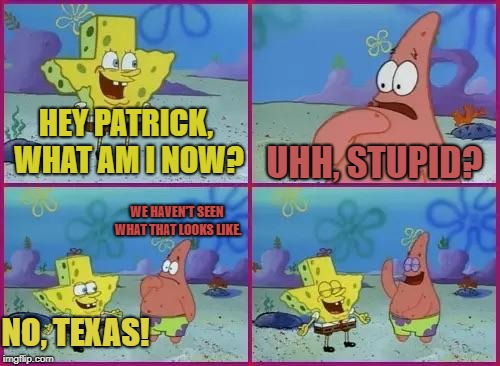 Cartoon Logic | HEY PATRICK, WHAT AM I NOW? UHH, STUPID? NO, TEXAS! WE HAVEN'T SEEN WHAT THAT LOOKS LIKE. | image tagged in spongebob texas,cartoon logic | made w/ Imgflip meme maker