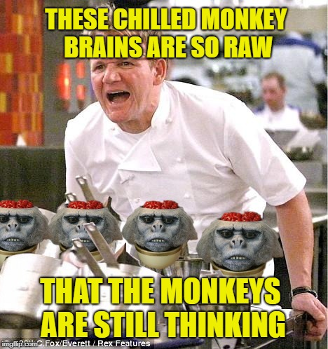 Dinner of Doom | THESE CHILLED MONKEY BRAINS ARE SO RAW THAT THE MONKEYS ARE STILL THINKING | image tagged in funny memes,angry chef gordon ramsay,indiana jones,temple of doom | made w/ Imgflip meme maker