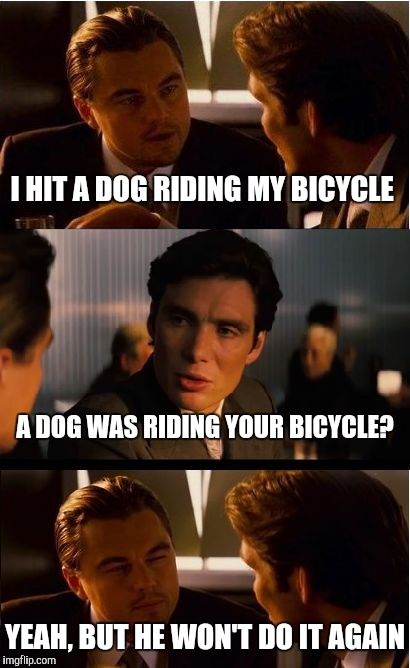 They Gotta' Learn Somehow | I HIT A DOG RIDING MY BICYCLE A DOG WAS RIDING YOUR BICYCLE? YEAH, BUT HE WON'T DO IT AGAIN | image tagged in memes,inception,teaching a dog new tricks,bicycle | made w/ Imgflip meme maker