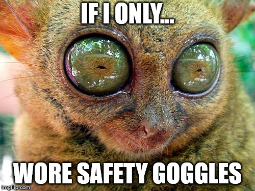 big eyes | IF I ONLY... WORE SAFETY GOGGLES | image tagged in big eyes | made w/ Imgflip meme maker