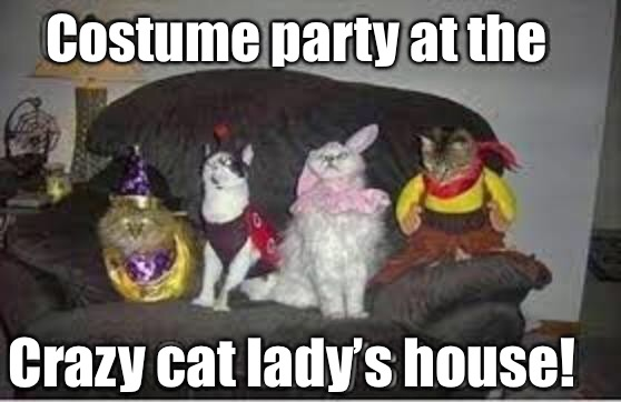 Costume party at the Crazy cat lady's house! | image tagged in memes,crazy cat lady,costume,party | made w/ Imgflip meme maker