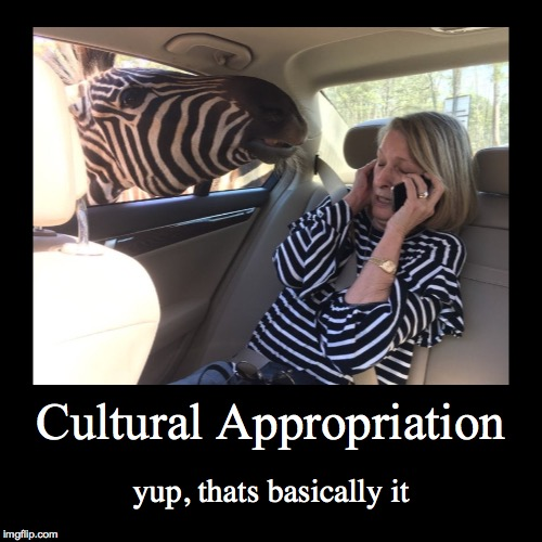 You don't see many demotivationals on imgflip, maybe I'm just not on here much | Cultural Appropriation | yup, thats basically it | image tagged in funny,demotivationals,zebra,woman,cultural appropriation,first world problems | made w/ Imgflip demotivational maker