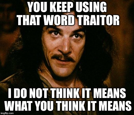 Inigo Montoya | YOU KEEP USING THAT WORD TRAITOR I DO NOT THINK IT MEANS WHAT YOU THINK IT MEANS | image tagged in memes,inigo montoya | made w/ Imgflip meme maker