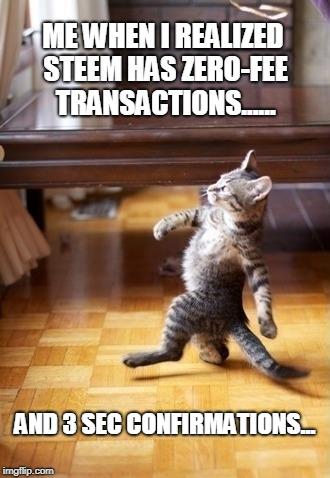 Cool Cat Stroll Meme | ME WHEN I REALIZED STEEM HAS ZERO-FEE TRANSACTIONS...... AND 3 SEC CONFIRMATIONS... | image tagged in memes,cool cat stroll | made w/ Imgflip meme maker