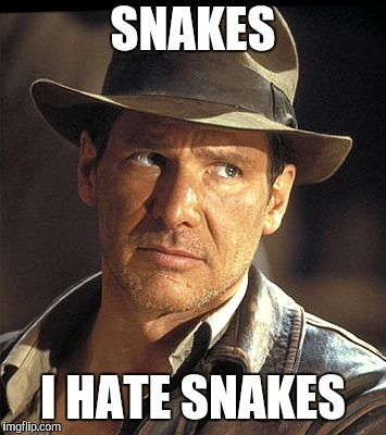 Indiana jones | SNAKES I HATE SNAKES | image tagged in indiana jones | made w/ Imgflip meme maker