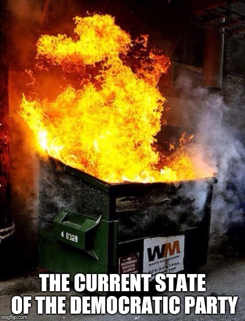 Dumpster Fire | THE CURRENT STATE OF THE DEMOCRATIC PARTY | image tagged in dumpster fire | made w/ Imgflip meme maker