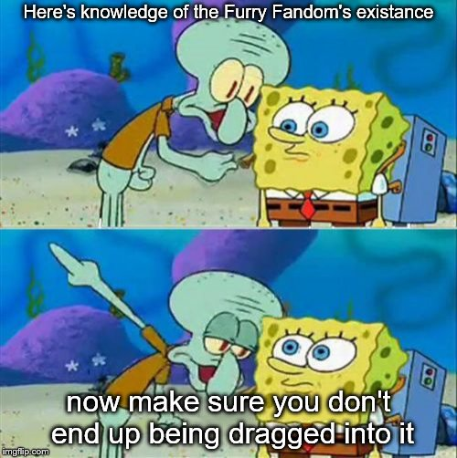 Something I didn't listen to | Here's knowledge of the Furry Fandom's existance now make sure you don't end up being dragged into it | image tagged in memes,talk to spongebob,furry | made w/ Imgflip meme maker
