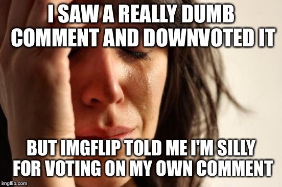 First World Problems Meme | I SAW A REALLY DUMB COMMENT AND DOWNVOTED IT BUT IMGFLIP TOLD ME I'M SILLY FOR VOTING ON MY OWN COMMENT | image tagged in memes,first world problems | made w/ Imgflip meme maker