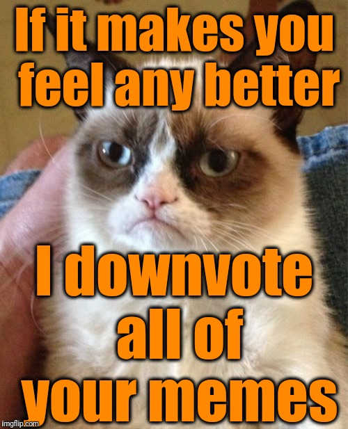 Grumpy Cat Meme | If it makes you feel any better I downvote all of your memes | image tagged in memes,grumpy cat | made w/ Imgflip meme maker