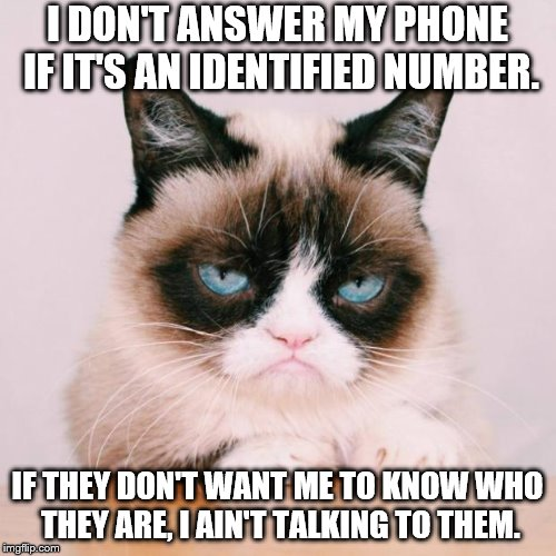 grumpy cat again | I DON'T ANSWER MY PHONE IF IT'S AN IDENTIFIED NUMBER. IF THEY DON'T WANT ME TO KNOW WHO THEY ARE, I AIN'T TALKING TO THEM. | image tagged in grumpy cat again | made w/ Imgflip meme maker