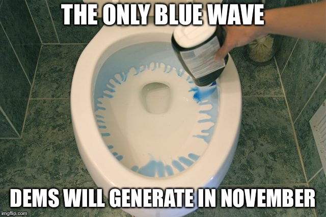 blue wave democrat | THE ONLY BLUE WAVE DEMS WILL GENERATE IN NOVEMBER | image tagged in blue wave democrat | made w/ Imgflip meme maker