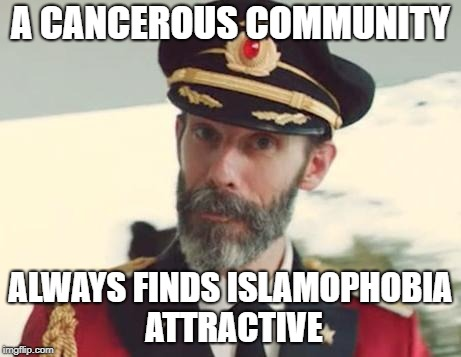 Captain Obvious | A CANCEROUS COMMUNITY ALWAYS FINDS ISLAMOPHOBIA ATTRACTIVE | image tagged in captain obvious,islamophobia,cancer,cancerous,community | made w/ Imgflip meme maker