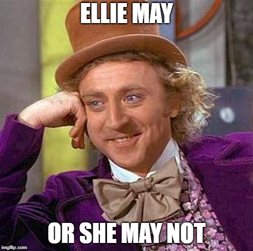 Creepy Condescending Wonka Meme | ELLIE MAY OR SHE MAY NOT | image tagged in memes,creepy condescending wonka | made w/ Imgflip meme maker