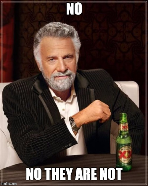 The Most Interesting Man In The World Meme | NO NO THEY ARE NOT | image tagged in memes,the most interesting man in the world | made w/ Imgflip meme maker
