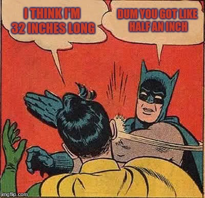 Batman Slapping Robin Meme | I THINK I'M 32 INCHES LONG DUM YOU GOT LIKE HALF AN INCH | image tagged in memes,batman slapping robin | made w/ Imgflip meme maker