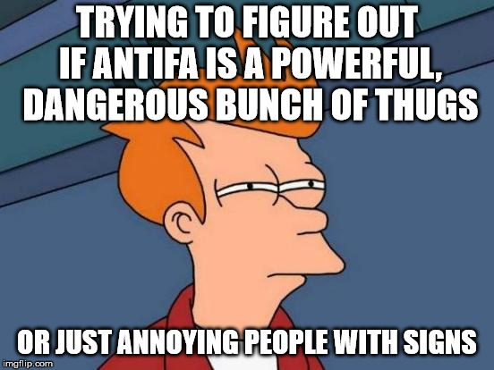 Futurama Fry Meme | TRYING TO FIGURE OUT IF ANTIFA IS A POWERFUL, DANGEROUS BUNCH OF THUGS OR JUST ANNOYING PEOPLE WITH SIGNS | image tagged in memes,futurama fry | made w/ Imgflip meme maker