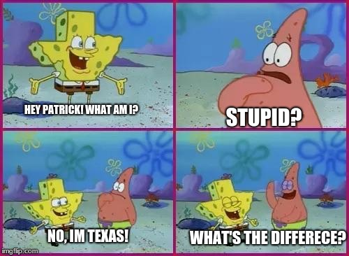 lol spongebob texas | HEY PATRICK! WHAT AM I? STUPID? NO, IM TEXAS! WHAT'S THE DIFFERECE? | image tagged in spongebob what's the difference | made w/ Imgflip meme maker