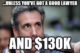Michael Cohen looking stupid | ...UNLESS YOU'VE GOT A GOOD LAWYER AND $130K | image tagged in michael cohen looking stupid | made w/ Imgflip meme maker