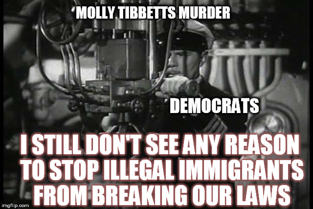 Up periscope | DEMOCRATS MOLLY TIBBETTS MURDER I STILL DON'T SEE ANY REASON TO STOP ILLEGAL IMMIGRANTS FROM BREAKING OUR LAWS | image tagged in up periscope | made w/ Imgflip meme maker
